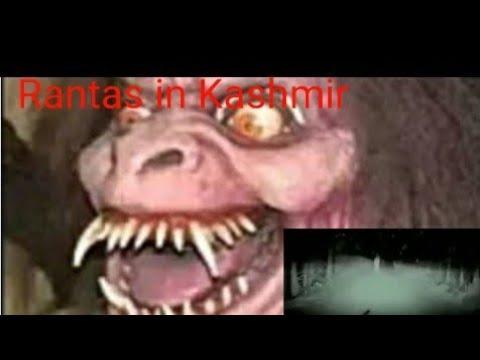 Download Rantas in Kashmir//Horror/Real or Fake //Trending story 🤔