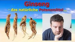 Ginseng - das natürliche Potenzmittel