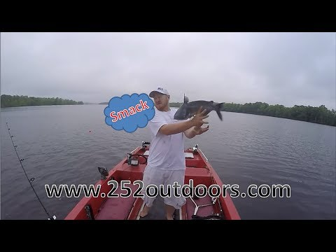 Catfishing the Chowan River with Billy Lowe