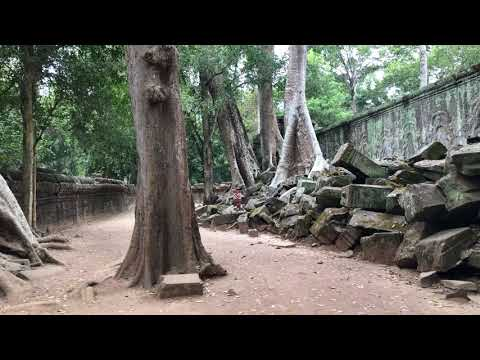Akaija goes Angkor - Ta Prohm - Cambodja by Akaija & Art
