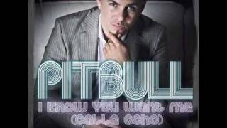 Pitbull-I Know you want me (calle ocho)(original)+Lyrics