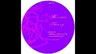 Bhoo & Ynm (aka Cipolletta) - cloud seeding (Sasse remix)