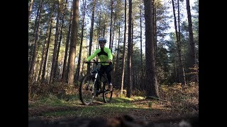 Cycling in Thetford Forest