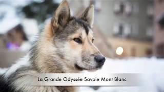 Teaser Grande Odyssée Savoie Mont Blanc 2018 © Office de Tourisme de Pralognan