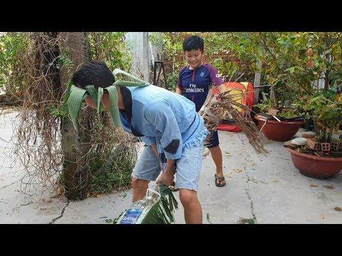 Trò Chơi Bé Pin Ngựa Cây Ngựa Hơi ❤ ChiChi ToysReview TV ❤ Đồ Chơi Trẻ Em Baby Doli Fun Song Bài Hát