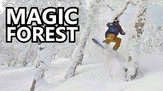 Magic Forest Snowboarding in Japan