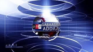 OMN: Yaada Jiraattota Magaalota Oromiyaa