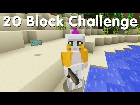 Minecraft PS4 - 20 Block Challenge - Delicious Fish (5)