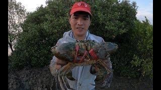 """荒岛赶海就是过瘾,螃蟹都是巨无霸""""青蟹王"""",发财了"""