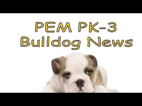 2018-11-09 PEM PK-3 Bulldog News