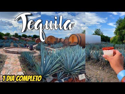 🔴 Tequila Jalisco 2020, es FANTASTICO 😱 | Que hacer?, Que Comer?, Costos, TIPS (VALE LA PENA?)