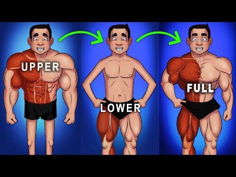 5 Reasons to Train Full-Body Everyday