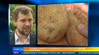 Сетевые гиганты отказываются покупать российский картофель