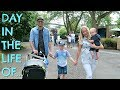 LIVING IN A ZOO  |  DAY IN THE LIFE