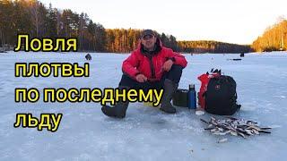 Ловля плотвы по последнему льду Зимняя рыбалка