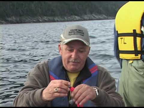 SEASON 5   COD FISHING IN CONCEPTION BAY