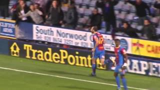 All Glenn Murray's 31 Goals From 2012/13