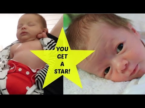 STARS FOR LYNDLE! | BARB'S SURPRISE