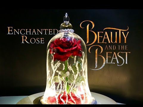 Enchanted Rose : DIY Movie Prop : Beauty and The Beast Live Action Movie