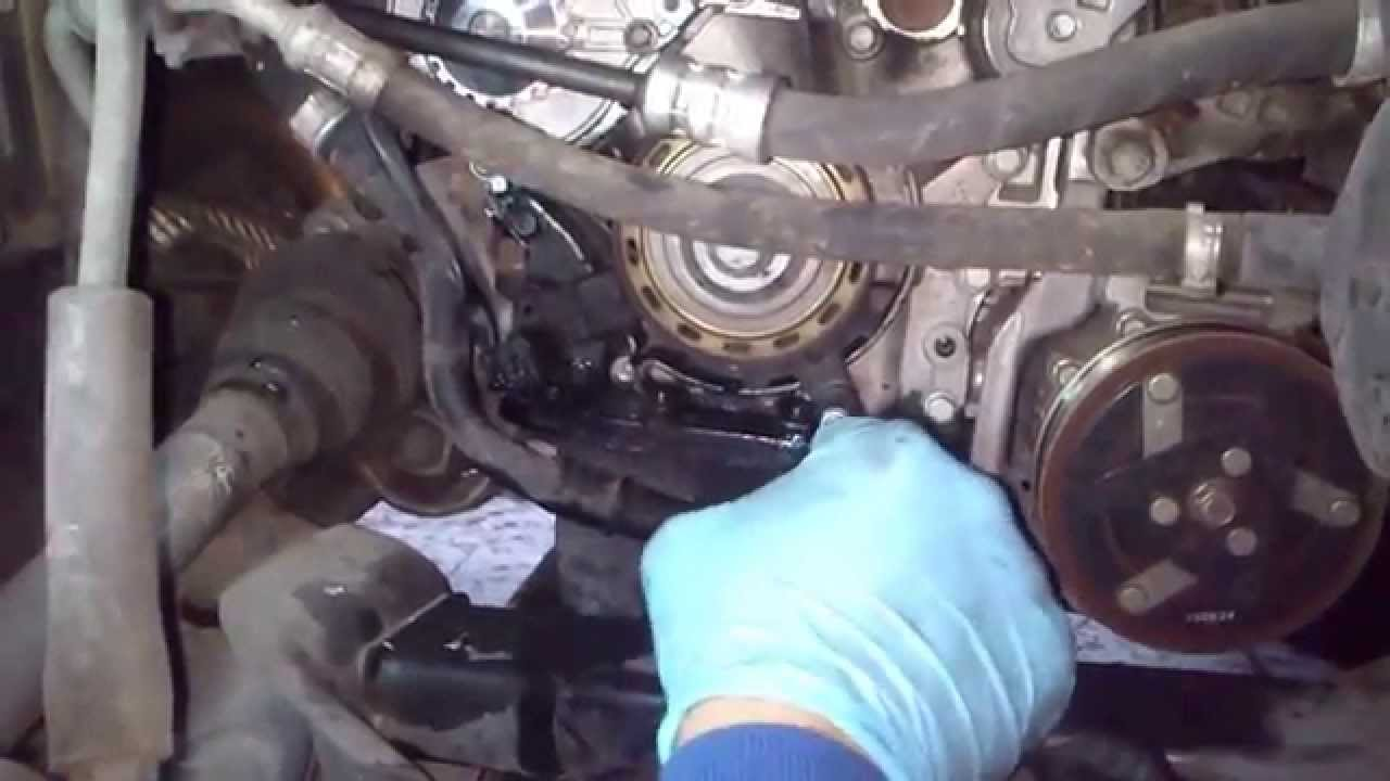 When To Change Timing Belt >> tutorial cambiar correa distribucion citroen c4 parte 2 - how to change a timing belt - YouTube