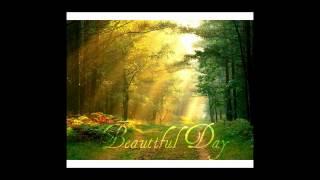 DJ Splash - Beautiful Day(DAN7 Remix)
