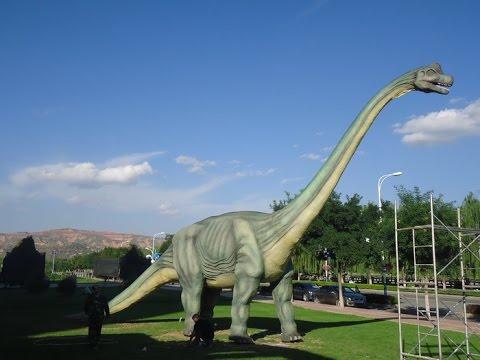 Robort dinosaurs&animated animals&dinosaur fossils