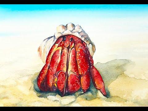 Hermit Crab Watercolor Painting Tutorial