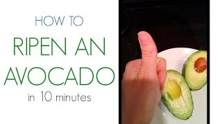 LifeHack: How To Ripen An Avocado In 10 Minutes