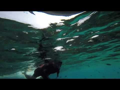 Malaysia Redang Marine Park by JJP