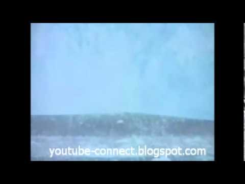 Antarctic Glacier Collapses In Ocean