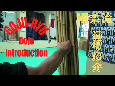 Okinawa Ryuibukan Association. Dojo Introduction. Goju-ryu karate.