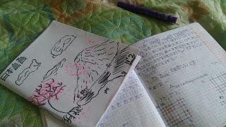 ЯПОНСКИЙ ЯЗЫК  С ЧЕГО НАЧАТЬ?   Обучение японского языка видео рассуждение