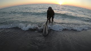 Brigand Outdoors Big Spinner Sharks in Englewood FL