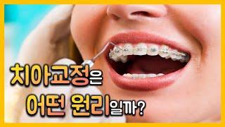 치아교정에는 어떤 과학이 숨어있을까 ?_3분과학