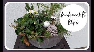 Weihnachtsdeko selber machen - CHRISTROSE weihnachtlich dekorieren I DIY DEKO Idee - KatisweltTV