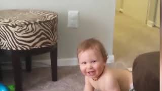 Funny cats and babies playing together   Best video Compilation