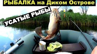 Рыболовные Приключения на Диком Острове Рыбалка 24 часа