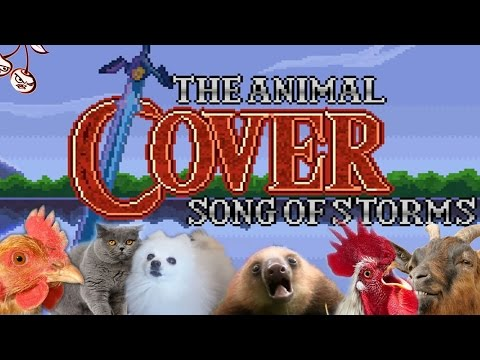 Song Of Storms (Animal Cover)