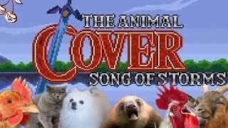 Baixar Song Of Storms (Animal Cover)