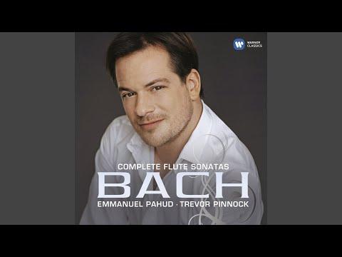 Flute Sonata in G Minor, BWV 1020: I. Allegro