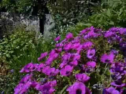 Prince Charles's Scottish castle garden