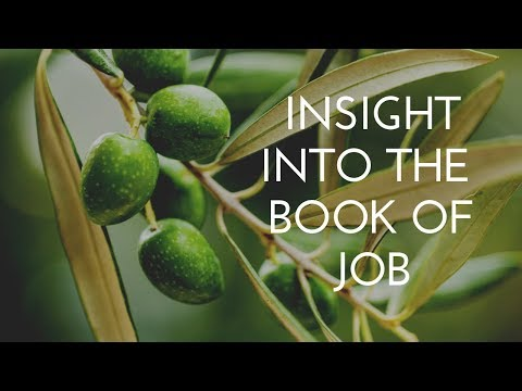 Insight into the book of Job
