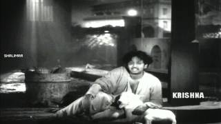 Jagame Maya Video Song || ANR Devadasu Movie ||  Akkineni Nageswara Rao, Savitri