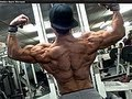 Thumbnail for Shredded Aesthetics Back Workout