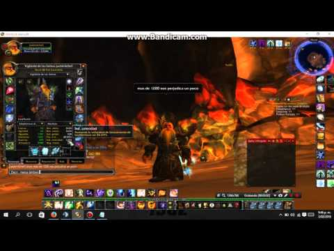 holy paladin 3.3 5 pve guide