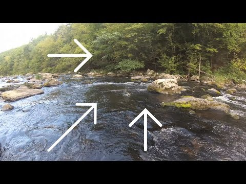Early Fall Trout Slam! - Farmington River Fly Fishing
