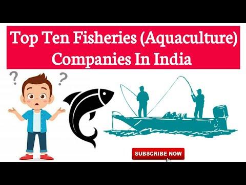 Top Ten Fisheries(Aquaculture) Companies In India Best Aquaculture Company In India Agriculture & GK