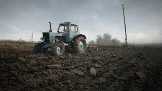 Под Минском появится новое агропроизводство