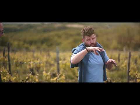 Vitis Vin I Tour de France I Wineries: Fabien Jouves I 2021