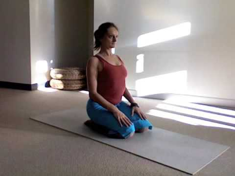 yoga stretch for the lower back  dynamic spine flex